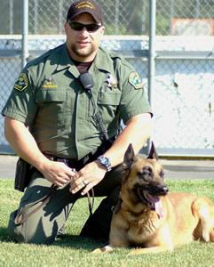 Sabre – Partner of Deputy Derek Tredinnick